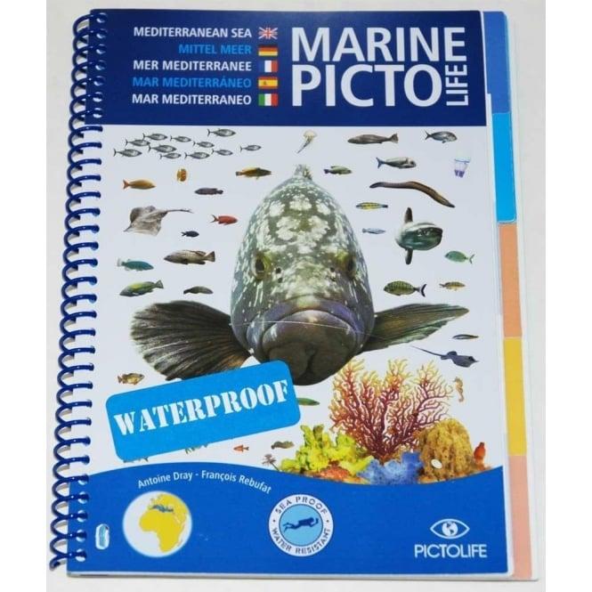 Marine Pictolife Mediterranean Sea