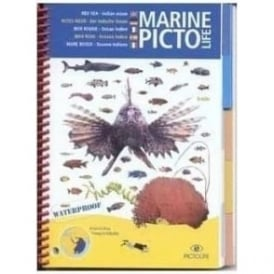Marine Pictolife Guide Red Sea & Indian Ocean
