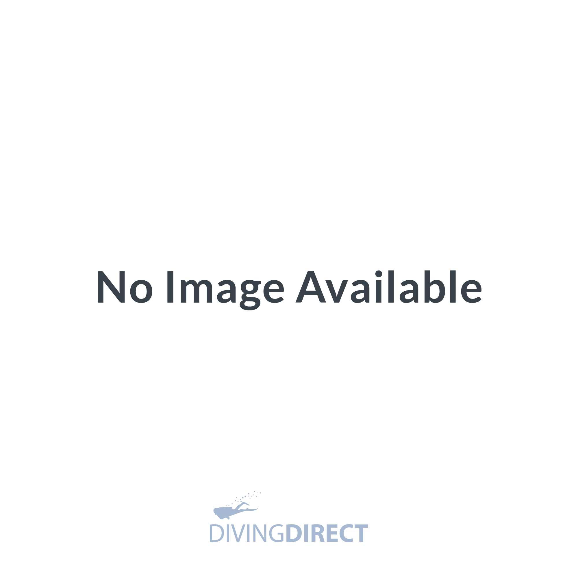 Bluelink Pro Dive Interface